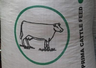 cowfeed2 8